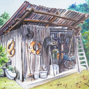 A Rustic Shed